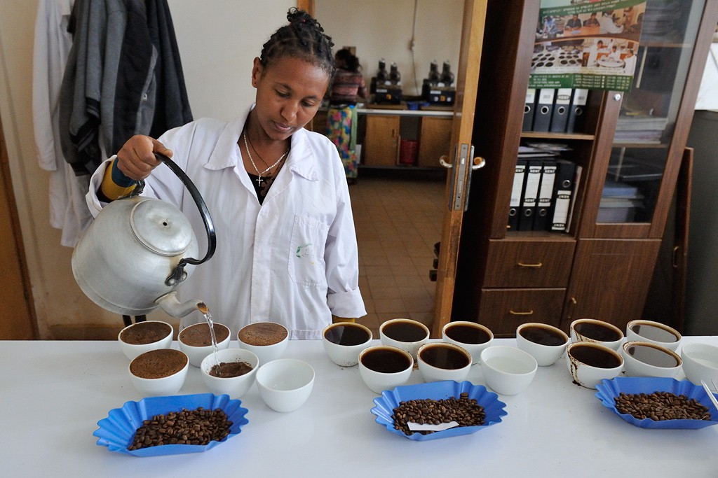 Kaffee-Verkostung im ECX