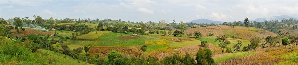 Äthiopische Landschaft (auf dem Weg nach Bonga)