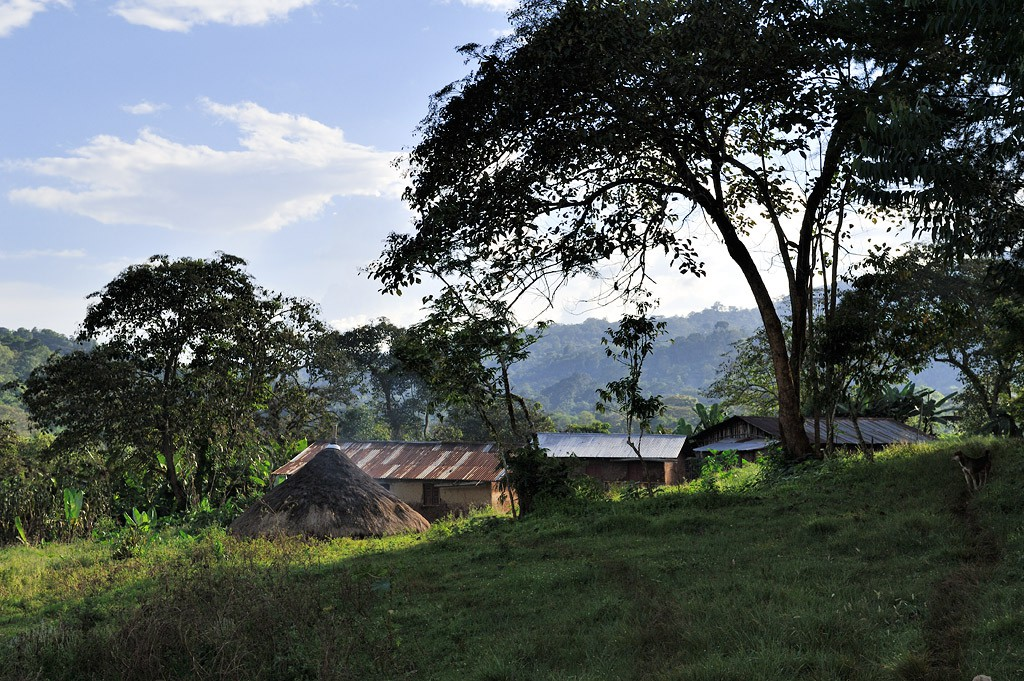 """The """"Kaldi facility"""" close to Bonga, Ethiopia"""